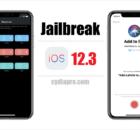 Cydia iOS 12.3