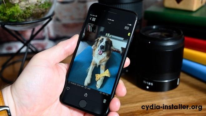 Pet-Portrait-on-iPhone Se2